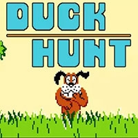 Duck Hunt Play