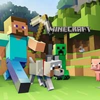 Minecraft Online Play